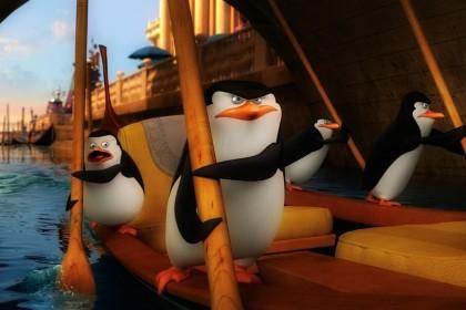Pinguini di Madagascar a Venezia